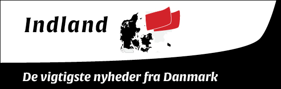 SIDEBAR_UNDTXT+Ramme_Indland+internatio+report3