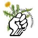 SUF - Socialistisk Ungdomsfront