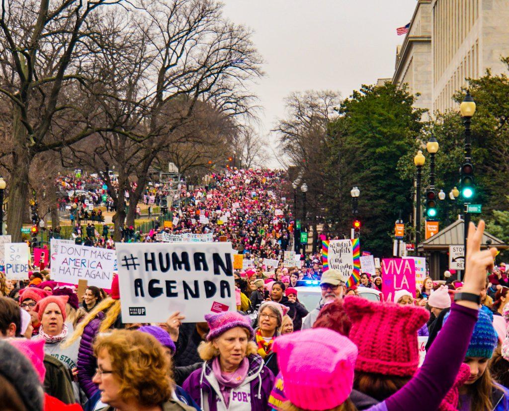 Dette billede har en tom ALT-egenskab (billedbeskrivelse). Filnavnet er Womens-March-Internalized-Misogynist-Juniper-Woodbury-1024x828.jpg